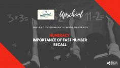 Numeracy: Importance of Fast Number Recall